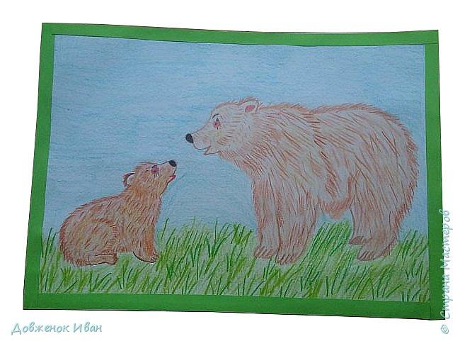 """Здравствуйте жители Страны Мастеров. Предоставляю вашему внимания мой конкурсный рисунок на тему """" Язык живой природы"""" . Вы спросите меня, почему я выбрал данную номинацию ? А ответ такой : все животные заботятся о своих детёнышей , также как и человек о своих детях. Меня заинтересовала тема материнства и воспитания бурых медведей. Поэтому я попытался нарисовать маму - медведицу и её ребёнка - детёныша .   фото 1"""