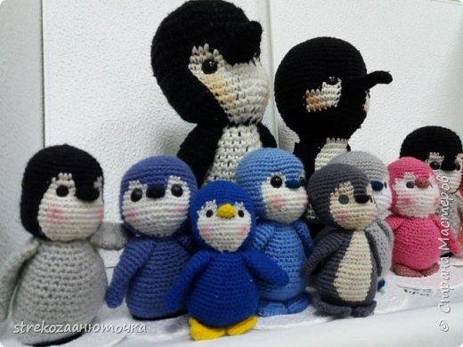 """Всем привет! Императорские пингвины приветствуют жителей """"Страны мастеров"""" фото 13"""