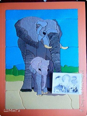 В общении с малышами люди и животные очень похожи. Чем больше и крупнее животное, тем больше внимания и заботы уделяется детенышу. фото 8