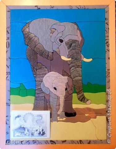 В общении с малышами люди и животные очень похожи. Чем больше и крупнее животное, тем больше внимания и заботы уделяется детенышу. фото 9