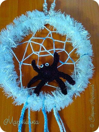 Паучок плетет зимнюю паутинку для снов. фото 2