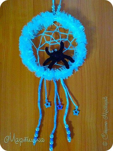 Паучок плетет зимнюю паутинку для снов. фото 1