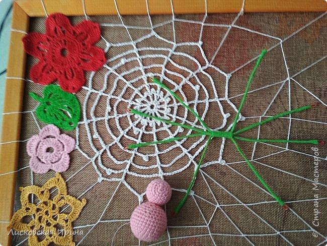 Из росы цветочной плетет паучок ковёр прочный, красочный и яркий.  фото 11