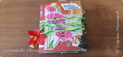 """Летний дневник """"Улыбнись с природой"""" фото 1"""