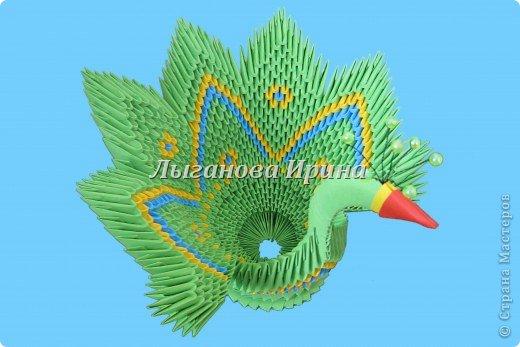 Птица из сказки фото 1