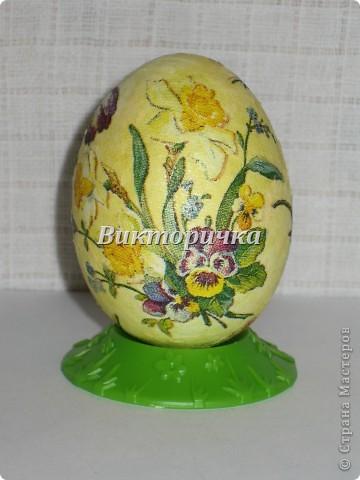 Яйцо динозавра. Поверх скорлупы нанесена застывающая пластичная масса и пока она ещё не засохла, пропечатывала рисунок колосками и веточками растений.  фото 11
