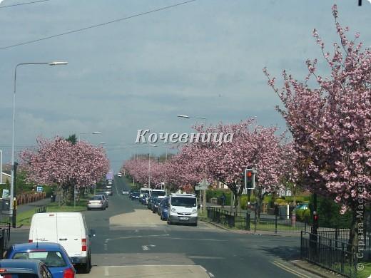 Весна в Великобритании фото 1