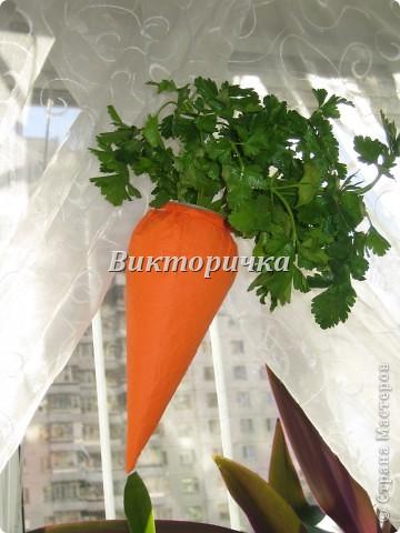 """Кашпо  """"Морковка"""" фото 1"""