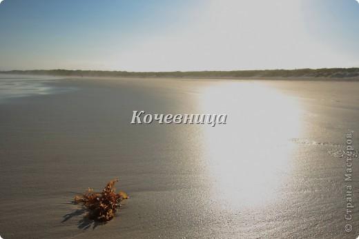 Москва – Амстердам - Алеутские острова – Гуаякиль – Кито – остров .Бальтра (Галапагосы).... Всего каких-то 27 часов и мы на месте, в таинственном, древнем мире, затерянном в Тихом Океане. фото 25