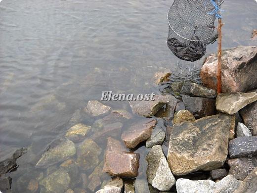 Это Каховское водохранилище - рукотворное море. С утра на берегу усаживаются рыбаки. Сегодня ловим бычка. При копировании статьи, целиком или частично, пожалуйста, указывайте активную ссылку на источник! http://stranamasterov.ru/user/9321 http://stranamasterov.ru/node/24791 фото 4