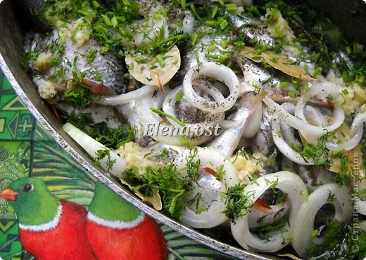 """Саламур или рыба маринованная. Еще можно назвать """"селедочка по-домашнему"""". Мой любимый рецепт приготовления рыбы. Рыбку можно брать любую. Особенно хороши: карп, карась, тарань, окунь, щука, судак.  фото 6"""
