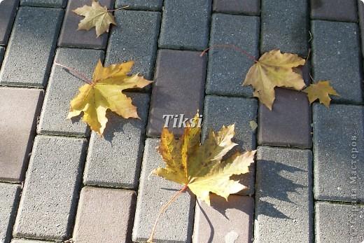 Очень люблю осень,именно вот эту,золотую ее пору....Это Подмосковье.Октябрь. Лес, точно терем расписной, Лиловый, золотой, багряный, Веселой, пестрою стеной Стоит над светлою поляной....И.Бунин. фото 25