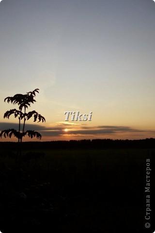 Очень люблю осень,именно вот эту,золотую ее пору....Это Подмосковье.Октябрь. Лес, точно терем расписной, Лиловый, золотой, багряный, Веселой, пестрою стеной Стоит над светлою поляной....И.Бунин. фото 7