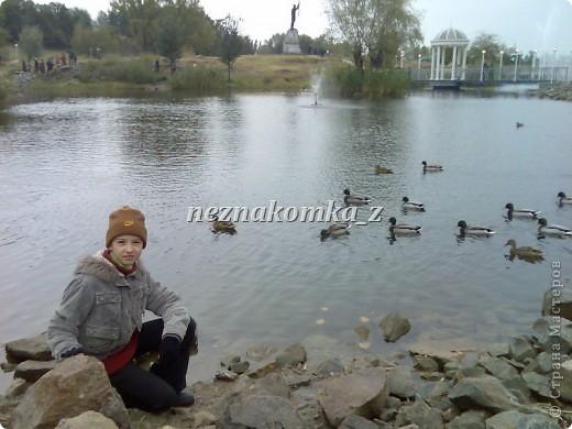 Покровская Ярмарка в Запорожье-2010 фото 11