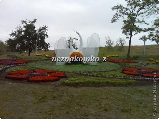 Покровская Ярмарка в Запорожье-2010 фото 13