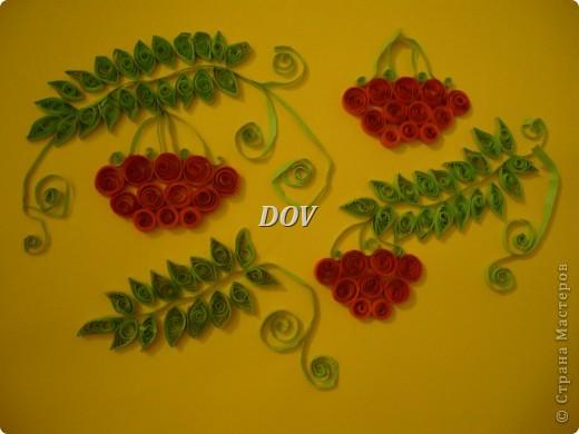 Просто цветочки фото 2