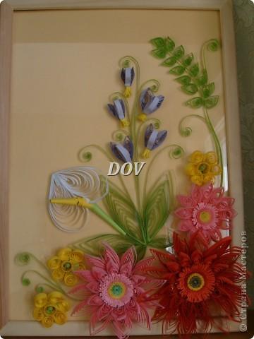 Просто цветочки фото 1