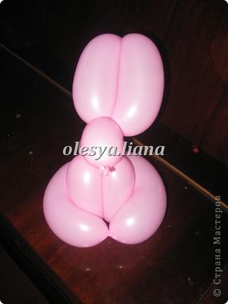зайчишка  розовый хвостишка фото 1