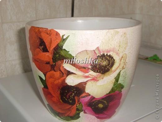 Цветочные горшки фото 3