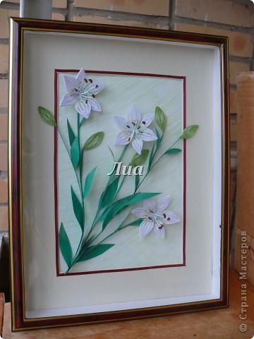 Лилии в подарок моей любимой тете. размер 30/40 фото 1