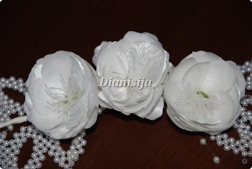 вроде цветки шиповника :) фото 2