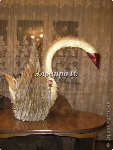 Сладкий лебедь на День Рождения. фото 2