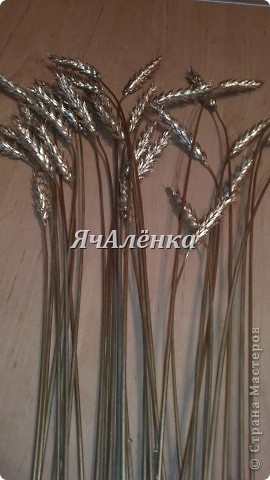 Золотые колосочки фото 3