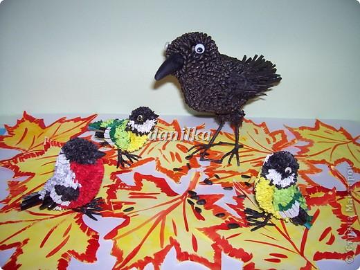 В птичьем семействе пополнение! фото 4