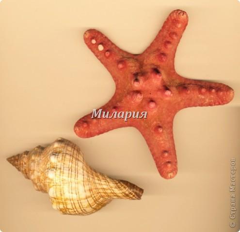 Море выбросило на берег морскую раковину и морскую звезду... Давно мечтала с детьми порисовать морской берег. Но никак не могла собрать все идеи в урок. А сегодня получилось и все остались довольны: и дети и я:) фото 2