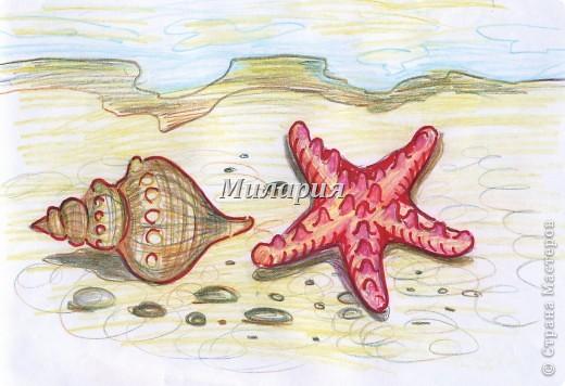 Море выбросило на берег морскую раковину и морскую звезду... Давно мечтала с детьми порисовать морской берег. Но никак не могла собрать все идеи в урок. А сегодня получилось и все остались довольны: и дети и я:) фото 1