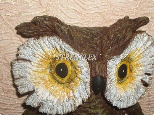Вот такая вот сова слепилась у меня еще летом для большой любительницы сов. фото 5