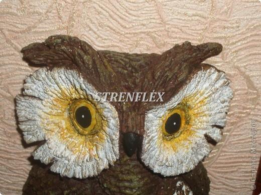 Вот такая вот сова слепилась у меня еще летом для большой любительницы сов. фото 6