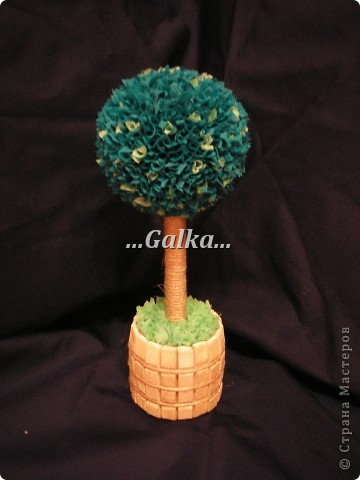 Деревце фото 4