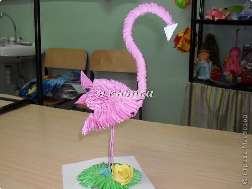Розовый фламинго фото 1