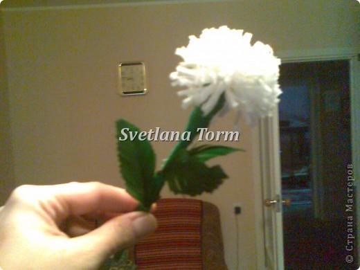 buket cvetov. фото 3