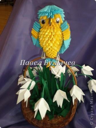 мой попугай Кеша.