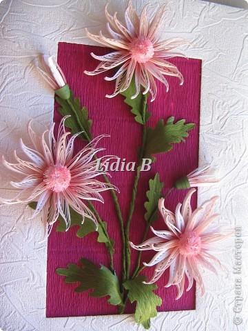 Мои хризантемы (Учитель - Олечка К, большое спасибо ей за науку!) фото 5