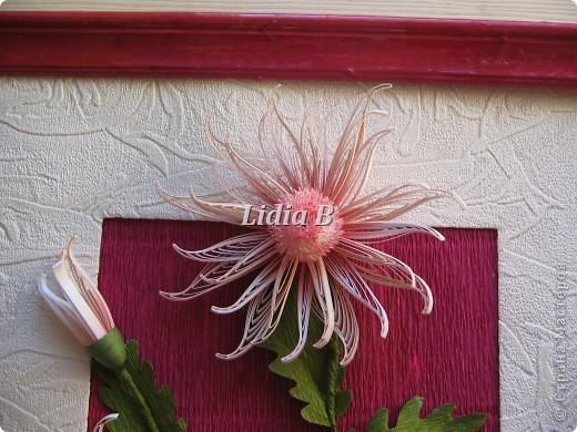 Мои хризантемы (Учитель - Олечка К, большое спасибо ей за науку!) фото 2