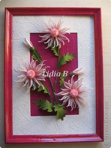 Мои хризантемы (Учитель - Олечка К, большое спасибо ей за науку!) фото 1