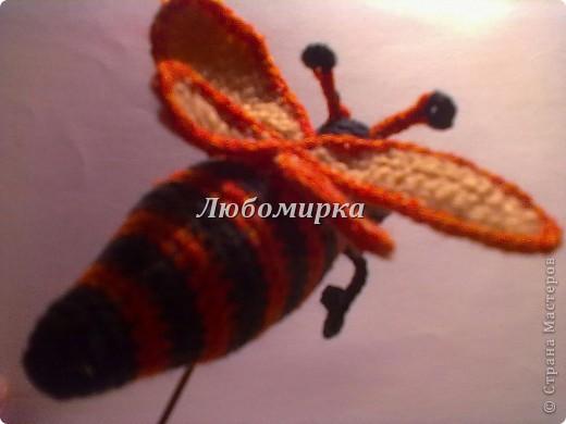 Милая пчёлка, связана крючком. Состоит из туловища, головы, двух пар крыльев и лапок...Наполнитель синтепон(вата).  фото 3