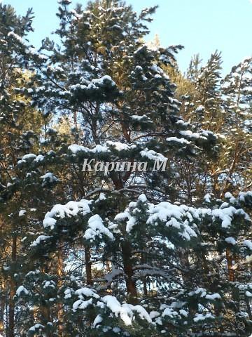 Рафайлово Исетский район Тюменская область фото 19