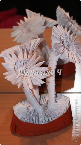 Цветы из модулей фото 3