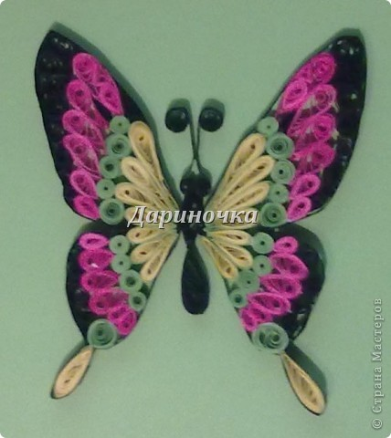 Бабочка  - 2 фото 3