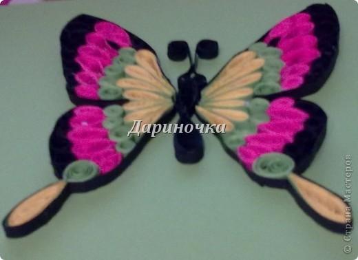 Бабочка  - 2 фото 4