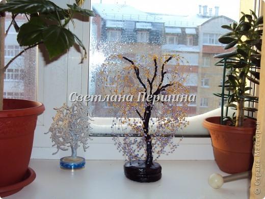 дерево любви (фантазия) фото 2