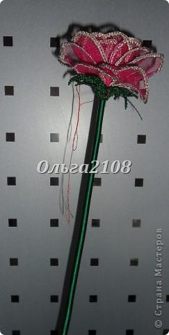 роза с бутоном фото 3