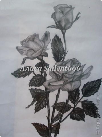 Рисунки карандашом фото 1