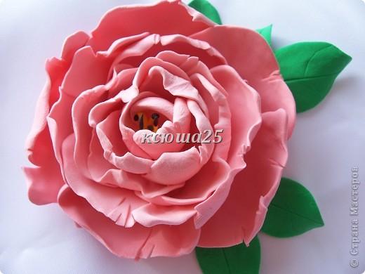 вот мой новый цветик,так нравиться,пока что он применение не нашел,только в стадии разработки)))Сейчас я леплю их много и планирую кое -что собрать....... фото 5