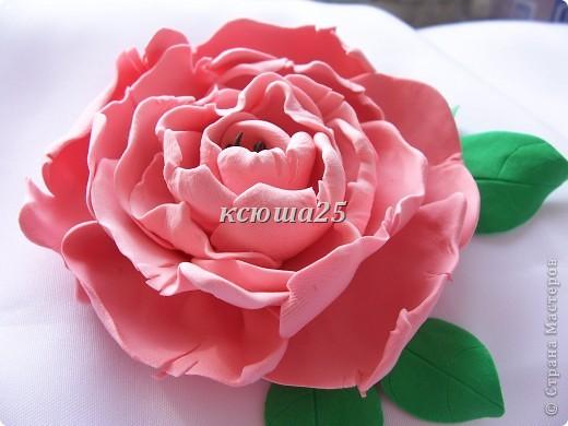 вот мой новый цветик,так нравиться,пока что он применение не нашел,только в стадии разработки)))Сейчас я леплю их много и планирую кое -что собрать....... фото 6