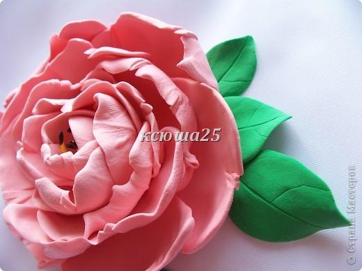 вот мой новый цветик,так нравиться,пока что он применение не нашел,только в стадии разработки)))Сейчас я леплю их много и планирую кое -что собрать....... фото 7